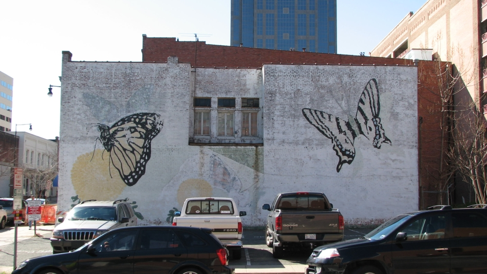 The Raleigh Connoisseur March 14 2008 Murals In Downtown
