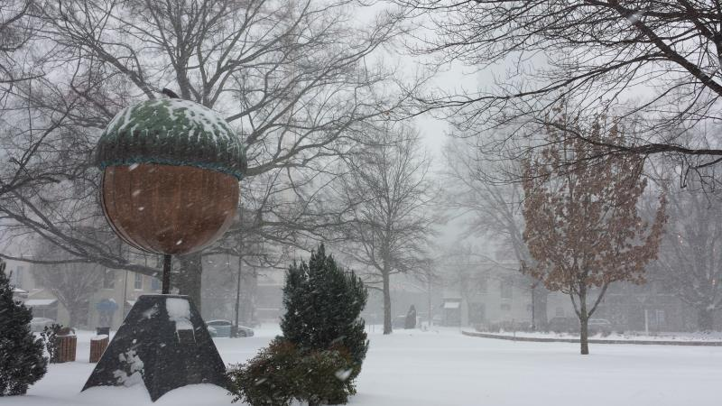 Snow Cover the Raleigh Acorn in Moore Square